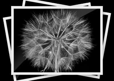 Zdjęcie 13×18