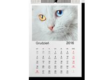 Kalendarz Pionowy 30x40cm /12miesięcy+okładka.Cena 79zł